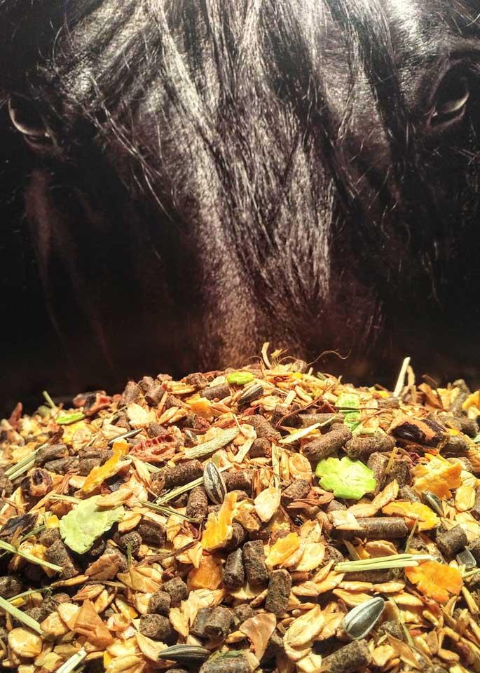 Pferdemüsli ohne Hafer mit viel Energie