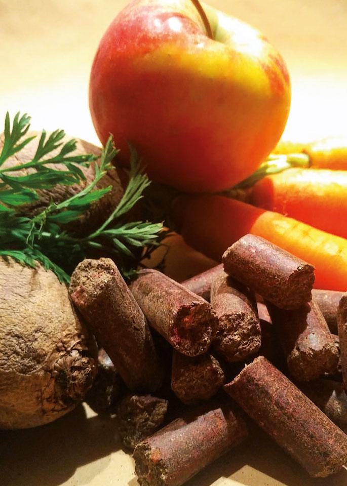 Leckerchen ohne Getreide, Zucker und Luzerne