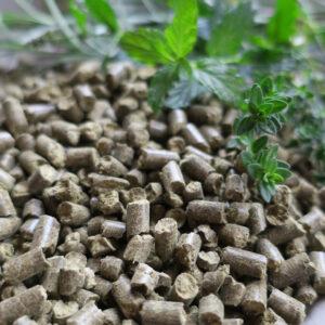 Herbal Allstars - Kräuter zur Unterstützung des Atemwege und Immunsystem für Pferde